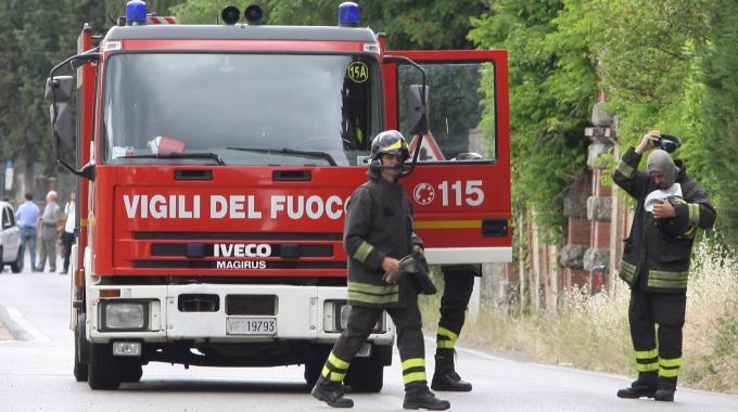 Due cani finiscono in una cava di 25 metri, li salvano i vigili del fuoco
