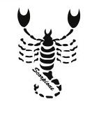Questa immagine ha l'attributo alt vuoto; il nome del file è 8-scorpione.jpg