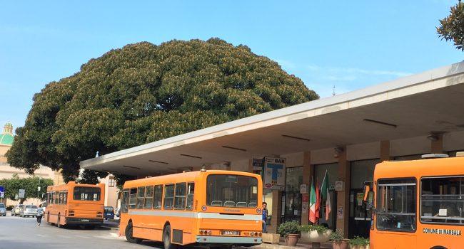 Dal 29 giugno distribuzione di tesserini bus anziani e invalidi