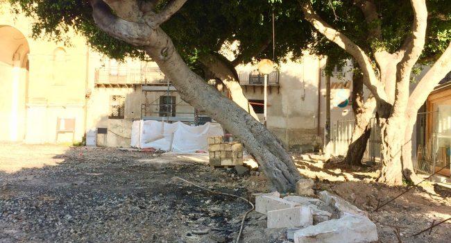 """Spostato un albero storico di Porta Nuova, scrive il comitato Più Verde: """"Dove finirà?"""""""